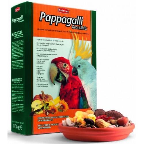 Imagine Grandmix Papagali Mari 600g