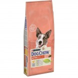 Dog Chow Active cu pui 14kg