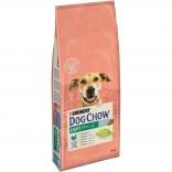 Dog Chow Light cu curcan 14kg
