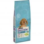 Dog Chow Puppy cu miel 14kg