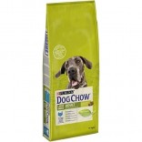Dog Chow Large Breed Adult cu curcan 14kg